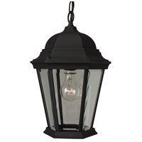 Craftmade Z251-TB Straight Glass 1 Light 10 inch Textured Matte Black Outdoor Pendant, Medium