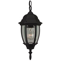 Exteriors by Craftmade Bent Glass 1 Light Outdoor Pendant in Matte Black Z261-05