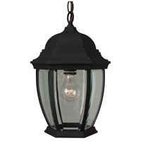 Bent Glass 1 Light 10 inch Matte Black Outdoor Pendant