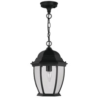 Bent Glass 1 Light 10 inch Rust Outdoor Pendant, Small