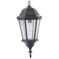 Craftmade Z2911-OBG Chadwick 1 Light 9 inch Brushed Aluminum Outdoor Pendant in Oiled Bronze Gilded Medium