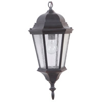 Craftmade Z2911-OBG Chadwick 1 Light 9 inch Brushed Aluminum Outdoor Pendant in Oiled Bronze Gilded, Medium