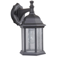 Hex Style 1 Light 12 inch Textured Matte Black Outdoor Wall Lantern, Small