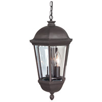 Britannia 3 Light 12 inch Oiled Bronze Outdoor Pendant in Clear Beveled