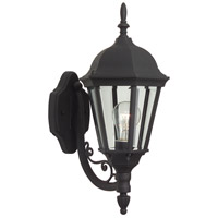 Straight Glass 1 Light 18 inch Textured Matte Black Outdoor Wall Lantern, Small