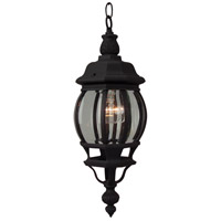 French Style 1 Light 7 inch Textured Matte Black Outdoor Pendant, Small