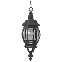French Style 1 Light 7 inch Rust Outdoor Pendant, Small