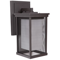 Riviera II 1 Light 17 inch Oiled Bronze Outdoor Wall Lantern, Large