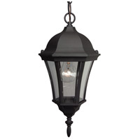 Curved Glass 1 Light 8 inch Matte Black Outdoor Pendant in Clear Glass