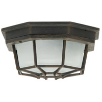 Bulkhead 1 Light 11 inch Rust Outdoor Flushmount