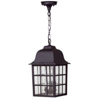 Grid Cage 3 Light 9 inch Matte Black Outdoor Pendant in Clear Seeded