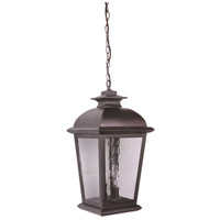 Branbury 3 Light 11 inch Oiled Bronze Outdoor Pendant in Water