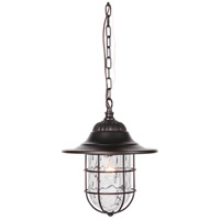 Fairmont 1 Light 12 inch Oiled Bronze Gilded Outdoor Pendant in Clear Hammered