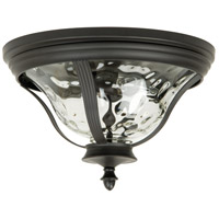 Frances 2 Light 14 inch Oiled Bronze Outdoor Flushmount in Clear Hammered