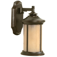 Arden 1 Light 15 inch Oiled Bronze Gilded Outdoor Wall Mount in Tea-Stained Glass, Small