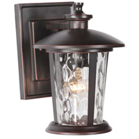 Summerhays 1 Light 11 inch Oiled Bronze Gilded Outdoor Wall Mount Lantern in Clear Hammered