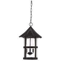Willoughby 3 Light 13 inch Midnight Outdoor Pendant in Clear Seeded