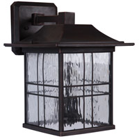 Craftmade Z7814-ABZ Dorset 2 Light 13 inch Aged Bronze Brushed Outdoor Wall Lantern, Medium