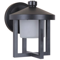 Alta LED 8 inch Midnight Outdoor Wall Lantern, Small