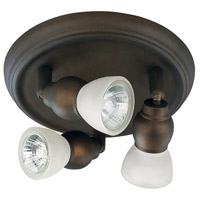 Lexington 3 Light Oil Rubbed Bronze Track Light Ceiling Light