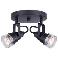 Brock 2 Light Black Track Light Ceiling Light