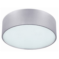 Canarm IFM318A13AL Dexter 2 Light 13 inch Aluminum Flushmount Ceiling Light