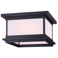 Canarm IOL474BK Akello 2 Light 11 inch Black Outdoor Flush Mount Light