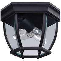 Canarm IOL60BK Foyer 2 Light 11 inch Black Outdoor Flushmount