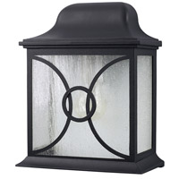 Signature 1 Light 12 inch Black Outdoor Wall Lantern