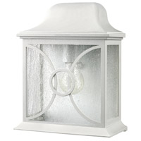 Signature 1 Light 12 inch White Outdoor Wall Lantern