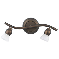 Lexington 2 Light Oil Rubbed Bronze Track Light Ceiling Light