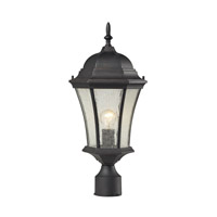 Wellington Park 1 Light 21 inch Weathered Charcoal Post Lantern