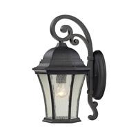 Wellington Park 1 Light 17 inch Weathered Charcoal Outdoor Wall Lantern