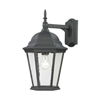 Cornerstone by Elk Temple Hill 1 Light Outdoor Wall Lantern in Matte Textured Black 8101EW/65