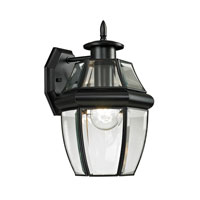 Ashford 1 Light 12 inch Black Outdoor Wall Lantern