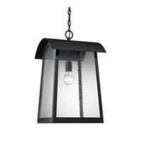 Cornerstone by Elk Prince Street 1 Light Outdoor Hanging Lantern in Matte Black with Clear Seeded Glass 8721EH/65