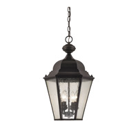 Cornerstone by Elk Cotswold 4 Light Outdoor Hanging Lantern in Oil Rubbed Bronze with Seeded Glass 8903EH/75