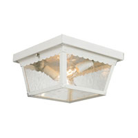 Springfield 2 Light 10 inch White Outdoor Ceiling
