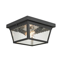 Springfield 2 Light 10 inch Matte Textured Black Outdoor Ceiling