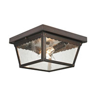 Springfield 2 Light 10 inch Hazelnut Bronze Outdoor Ceiling