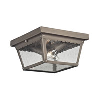 Springfield 2 Light 10 inch Antique Nickel Outdoor Ceiling