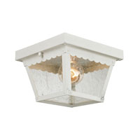 Springfield 2 Light 8 inch White Outdoor Ceiling
