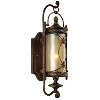 Corbett Lighting St. Moritz 1 Light Outdoor Wall Lantern in Moritz Bronze 76-21