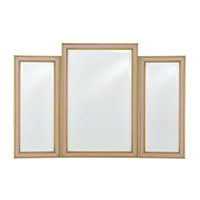 Arden 40 X 27 inch Peony and Stain Brass Vanity Mirror Home Decor