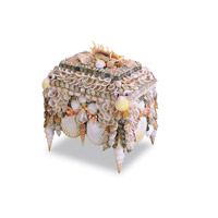 Boardwalk Shell 10 X 8 inch Natural Shell Jewelry Box