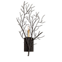 Currey & Company Midwinter 1 Light Wall Sconce in Rustic Bronze 5002