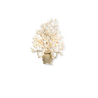 Currey & Company Seaward 2 Light Wall Sconce in White Coral/ Natural Sand 5035