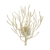 Currey & Company 5158 Eventide 1 Light 17 inch White Coral Wall Sconce Wall Light