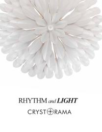 RHYTHM and LIGHT_opt.pdf