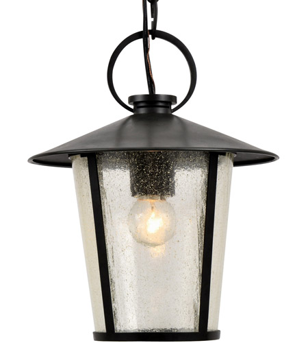 Crystorama AND-9203-SD-MK Andover 1 Light 9 inch Matte Black Outdoor Chandelier photo